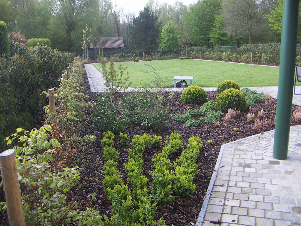 Green Garden - Tuinonderhoud 5
