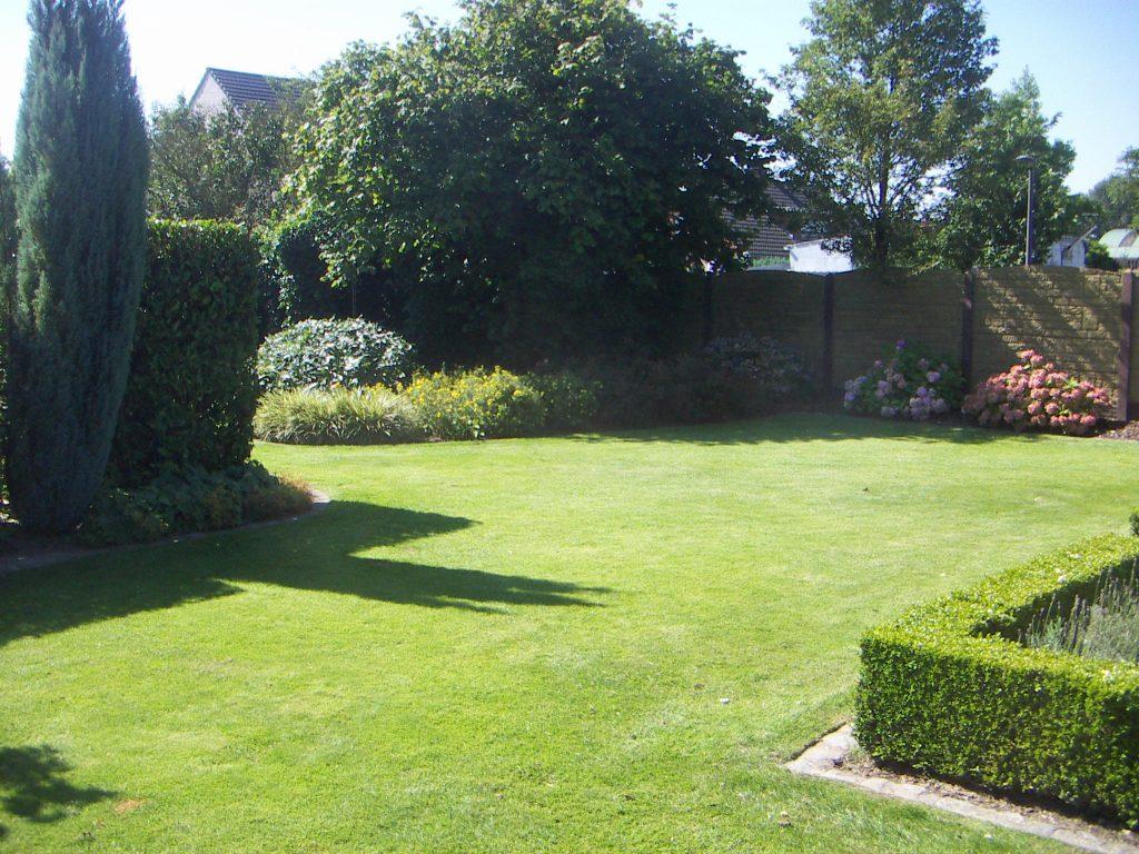 Green Garden - Tuinonderhoud 1